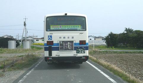 a28.jpg